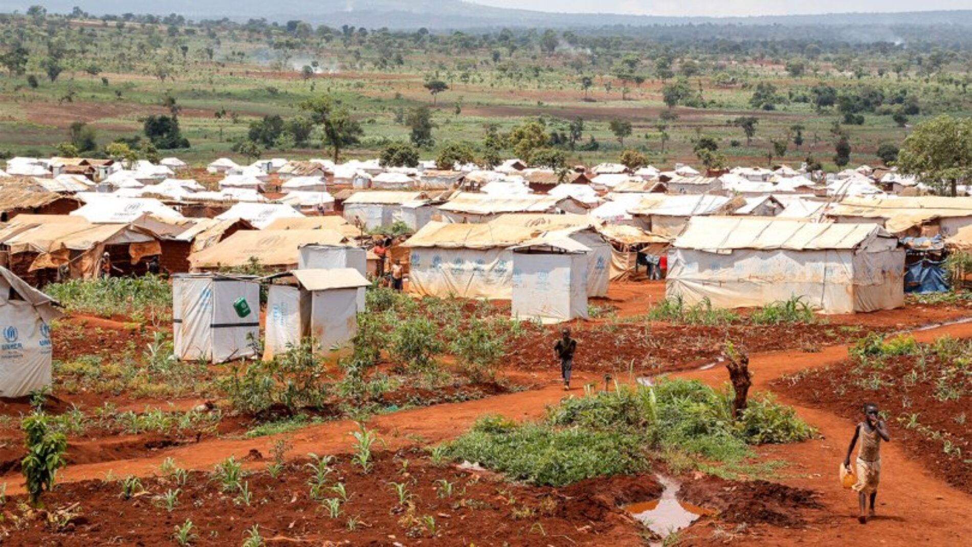 La Tanzanie détruit les maisons des réfugiés burundais qui rentrent