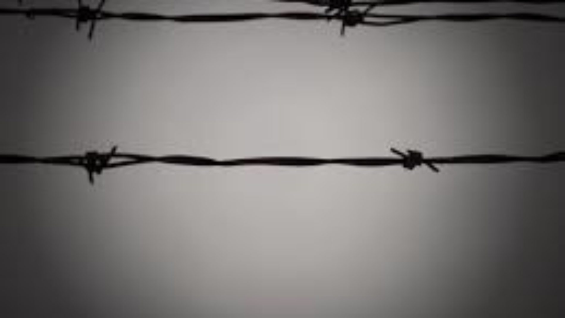 Uvira (RDC) : quatre adeptes de la prophétesse Zebiya purgeant une peine de 10 ans à la prison d'Uvira comptent interjeter appel