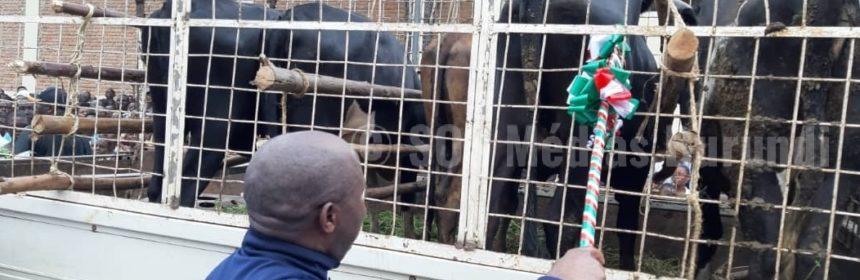 Burundi, CNDD-FDD, Evariste, Ndayishimiye, sos, Médias