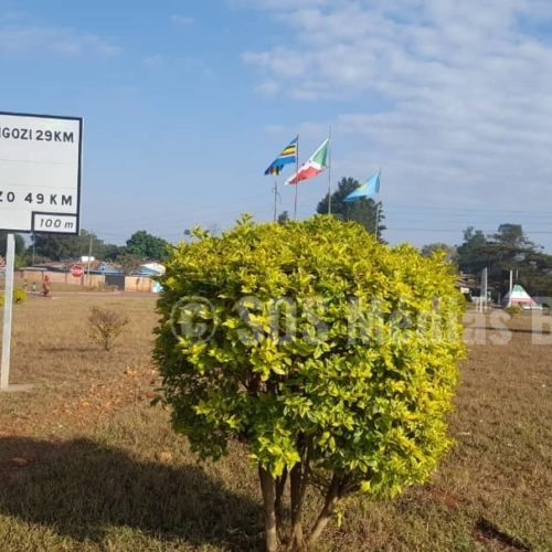 Arrestations en cascade de militants du CNL à Gisuru