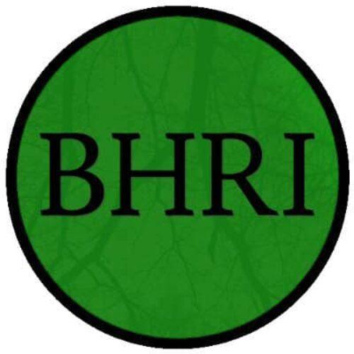 Burundi-Élections: l'Initiative pour les droits humains au Burundi (IDHB) dénonce l'inertie de la communauté internationale face aux crimes commis