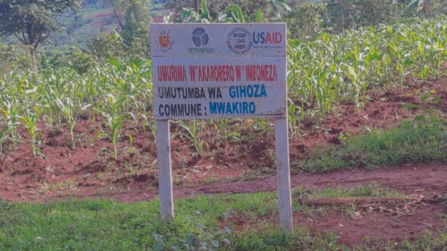 Mwakiro: un chef de zone arrêté pour tentative de meurtre