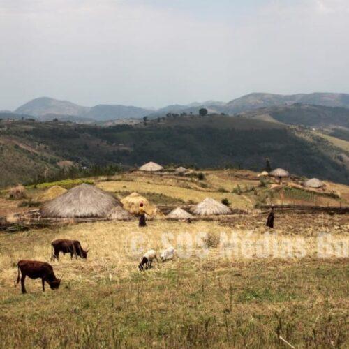 Mugamba: interpellation de quatre hommes dont un ancien militaire et un militaire en fonction