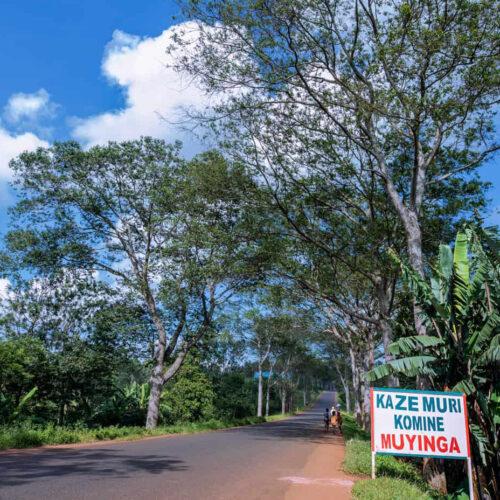 Muyinga: traque d'un réseau d'exportateurs illégaux