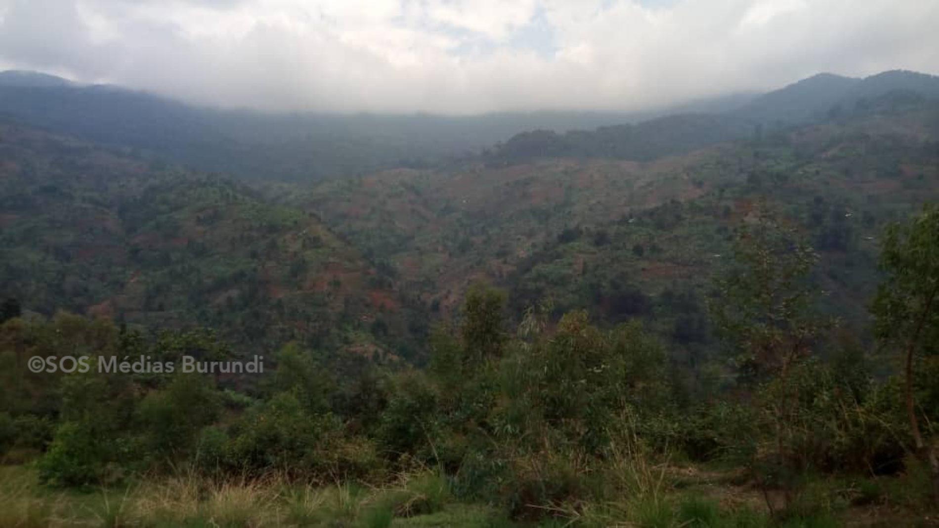 Bubanza: des habitants des collines proches de la Kibira craignent d'être attaqués