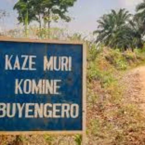 Buyengero: des vaches appartenant à un retraité ex FAB empoisonnées