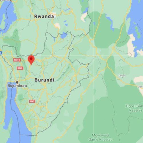 Kabarore (Kayanza) : la dermatose nodulaire tue dix-sept vaches en moins d'une semaine