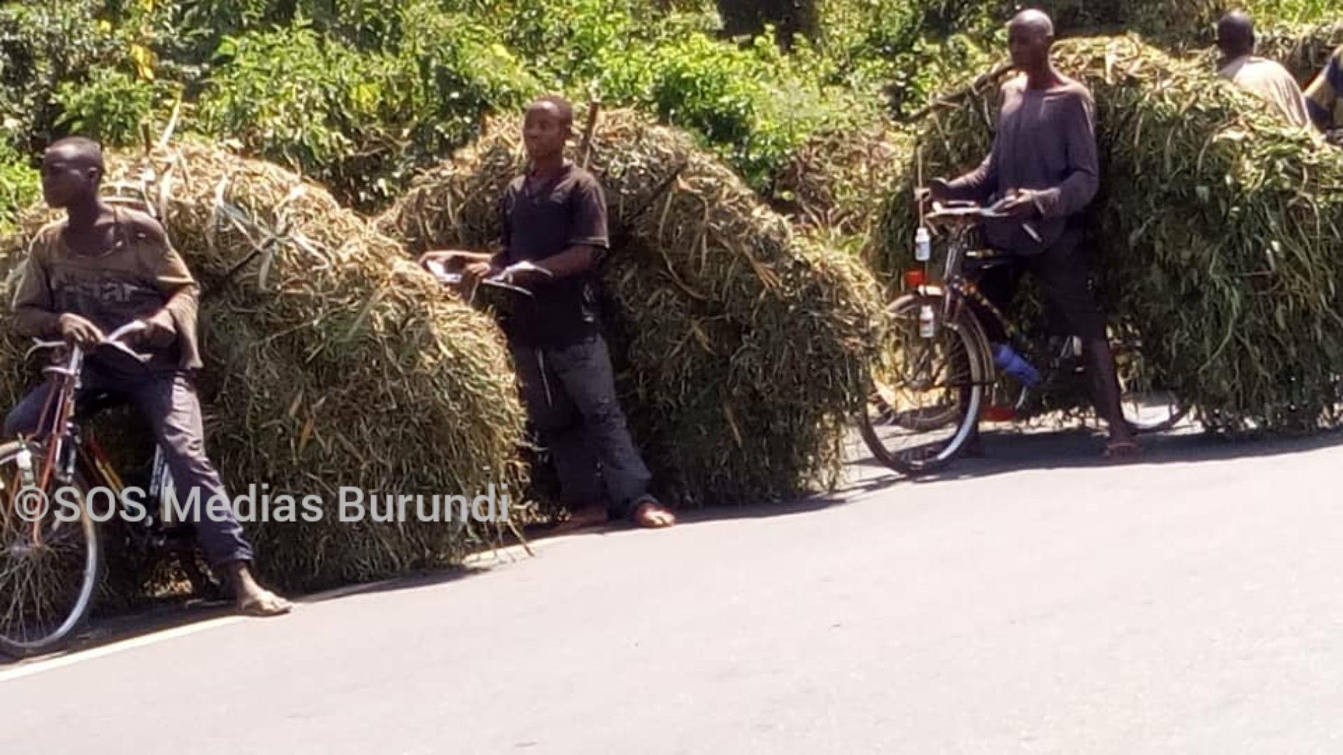 Bubanza : des conducteurs de taxis vélos dénoncent une gestion opaque de leurs fonds