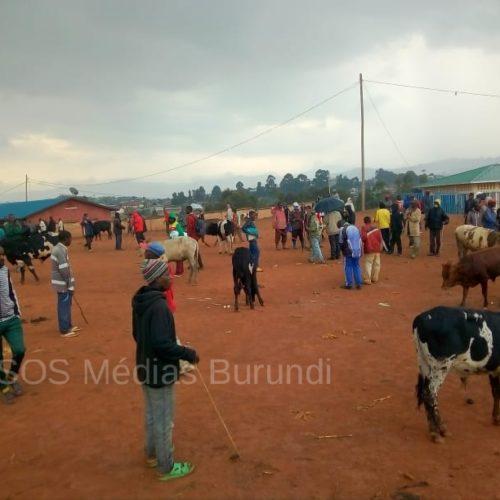 Kayanza : manque de latrines au marché de Gatwaro