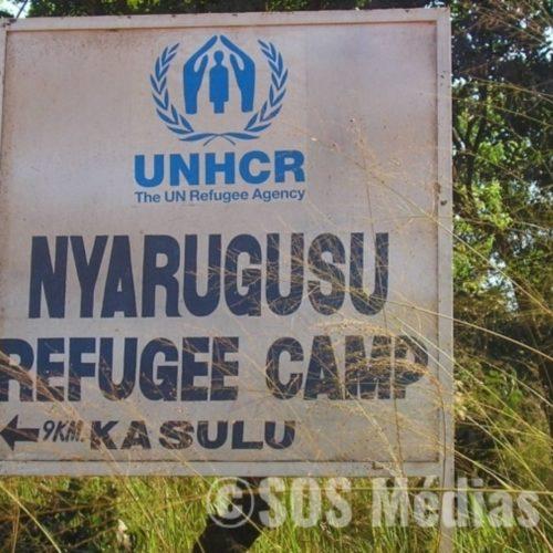 Nyarugusu (Tanzanie) : destruction des champs de cultures appartenant aux réfugiés burundais