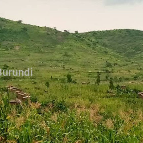 Mulongwe: le domicile d'un réfugié burundais pillé