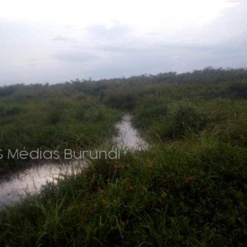 Kirundo : deux hommes portés disparus depuis deux semaines