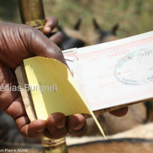 Muyinga : les taxes communales s'améliorent, des Imbonerakure jurent saboter le travail des nouveaux percepteurs