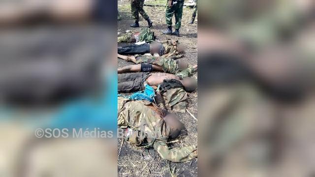 Des corps de rebelles tués par les FARDC