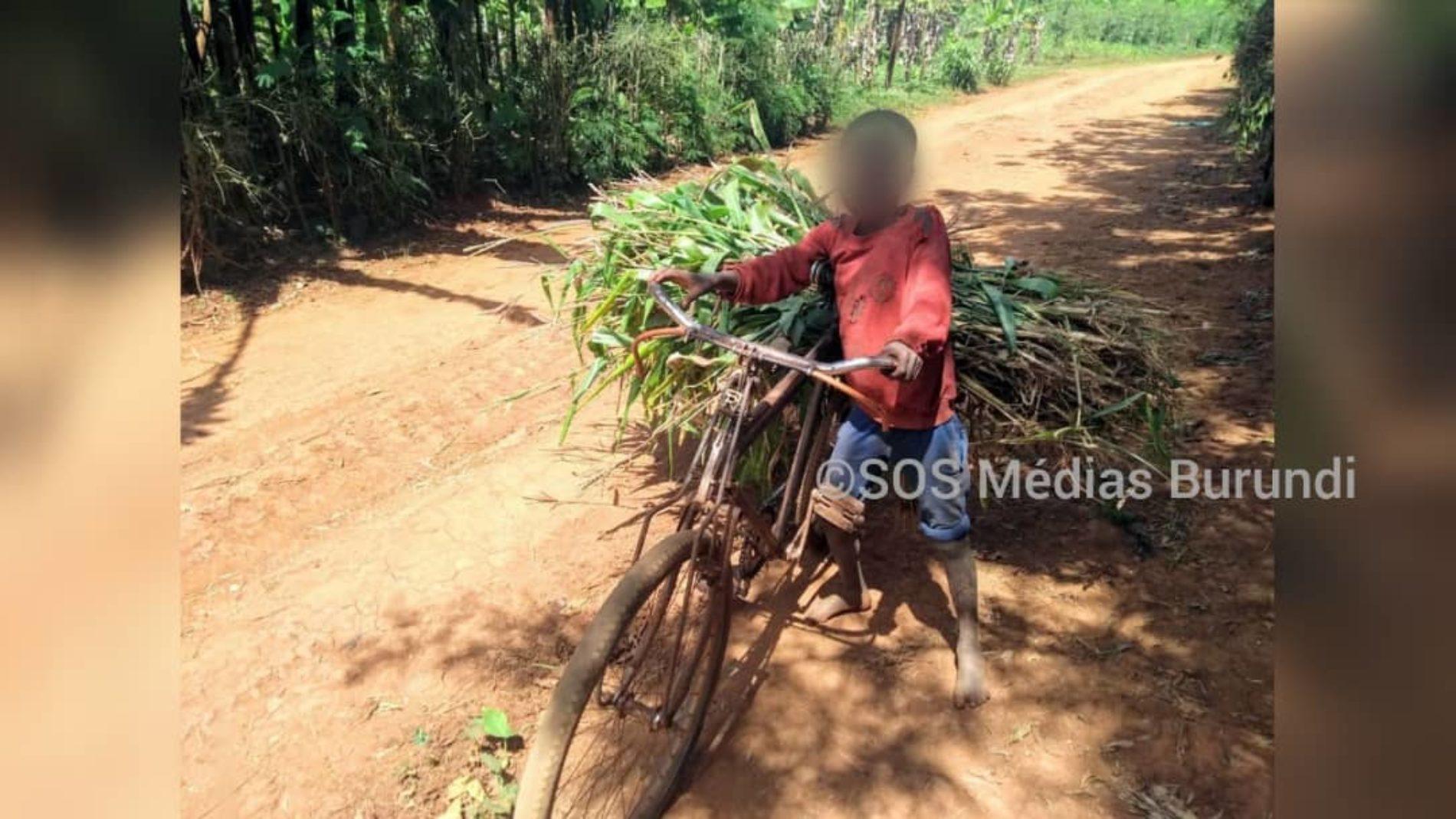 Photo de la semaine- Gashoho-Gisebeyi : l'allure inquiétante d'abandons scolaires