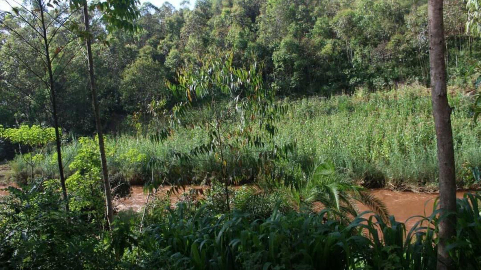 Gitega : un cadavre repêché dans la rivière Ruvyironza