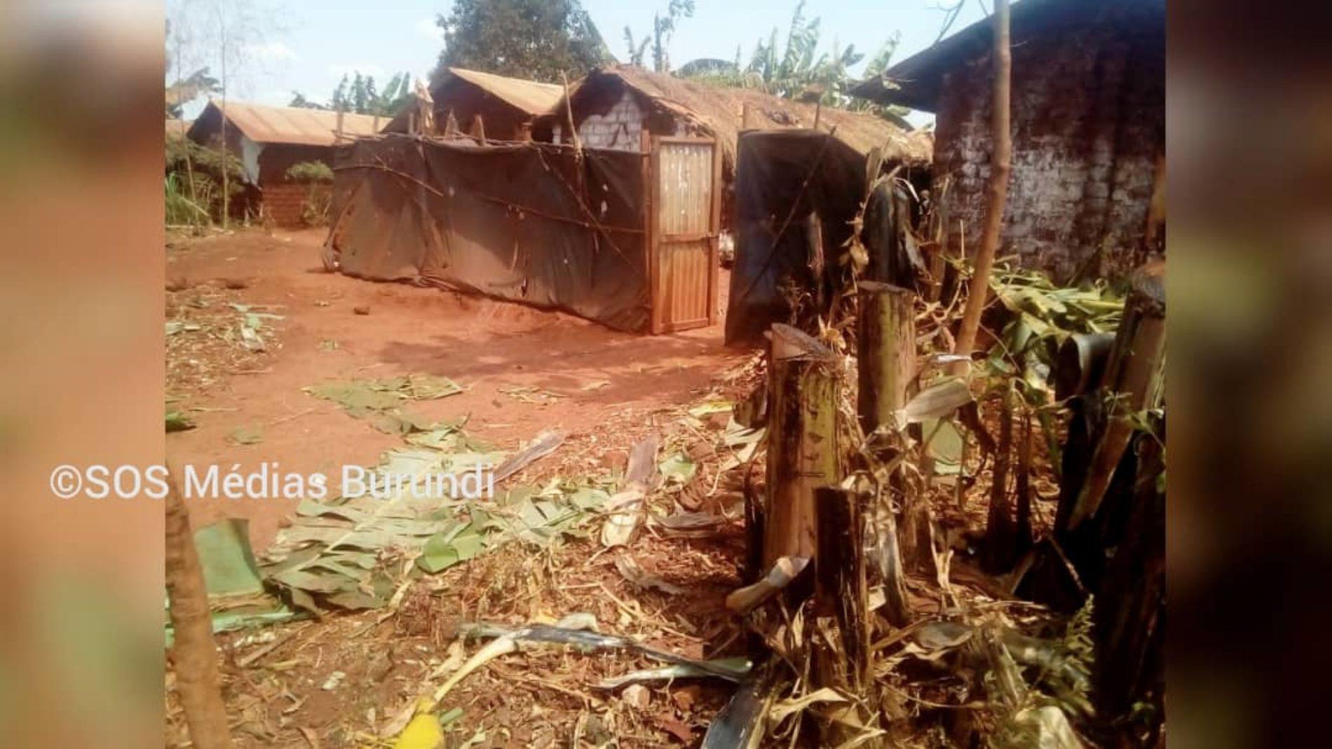 Nyarugusu (Tanzanie) : destruction des champs des rapatriés décriée
