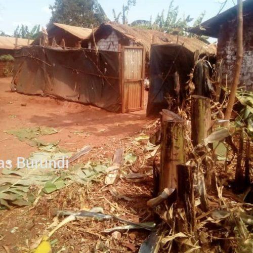 Photo de la semaine-Nyarugusu (Tanzanie) : destruction des champs des rapatriés décriée