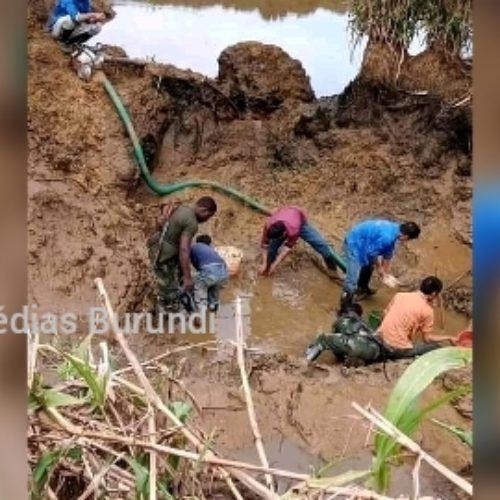 Ituri (RDC) : des notables et leaders de l'Ituri dénoncent une destruction de l'environnement par des étrangers