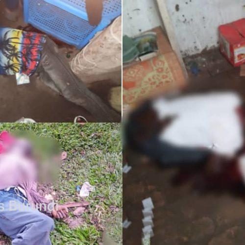 Rwenzori (RDC) : une attaque attribuée aux ADF fait sept morts